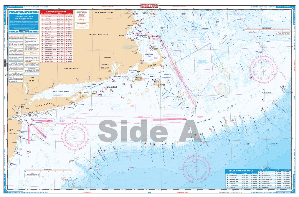 Bellingham, MN Nautical Charts and Fishing Maps